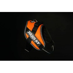 Szelki UV Orange rozm. mini